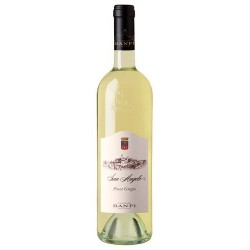Pinot Grigio San Angelo 2019