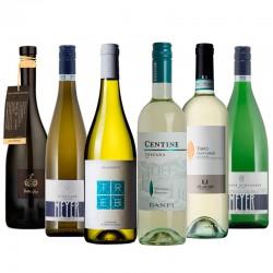 Degustační balíček mladých vín